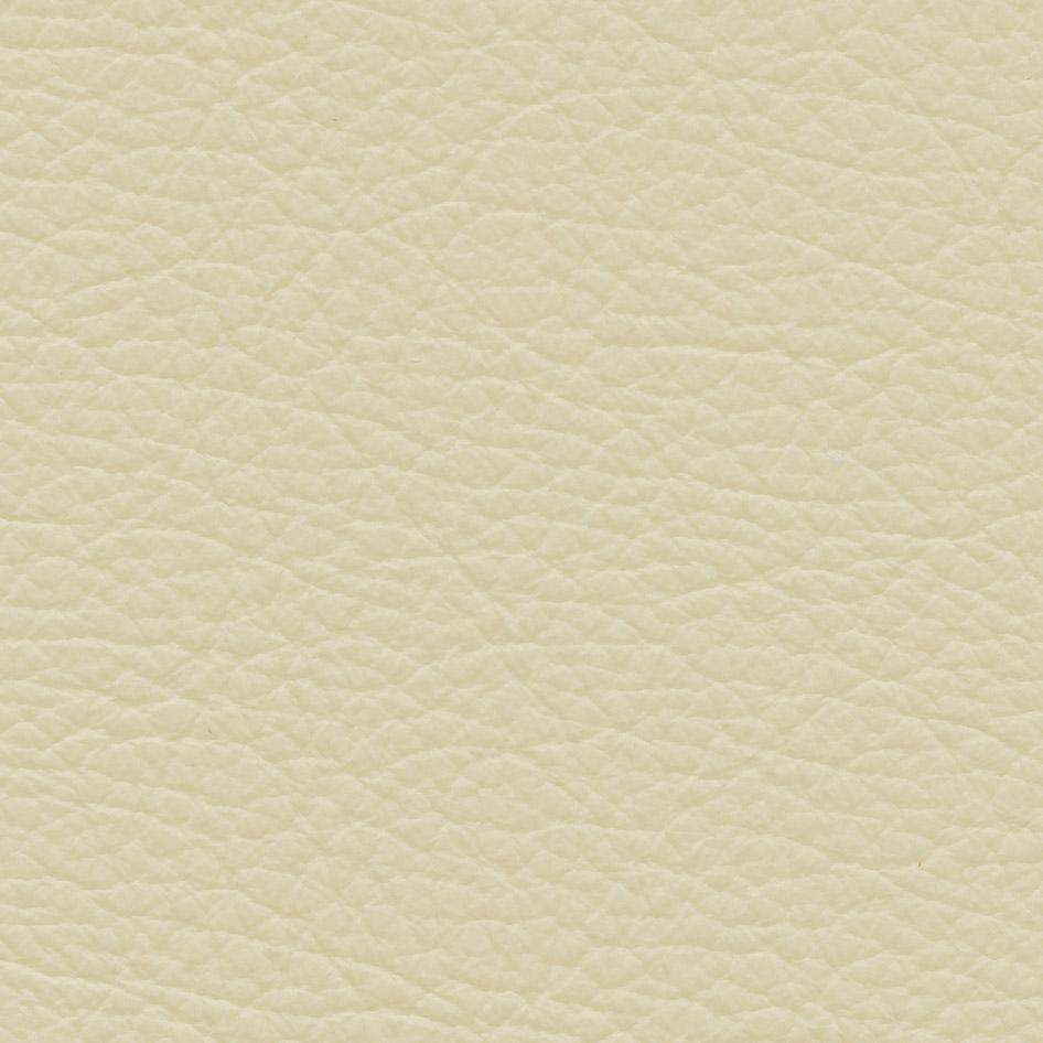 PRINCE- kategorie I.