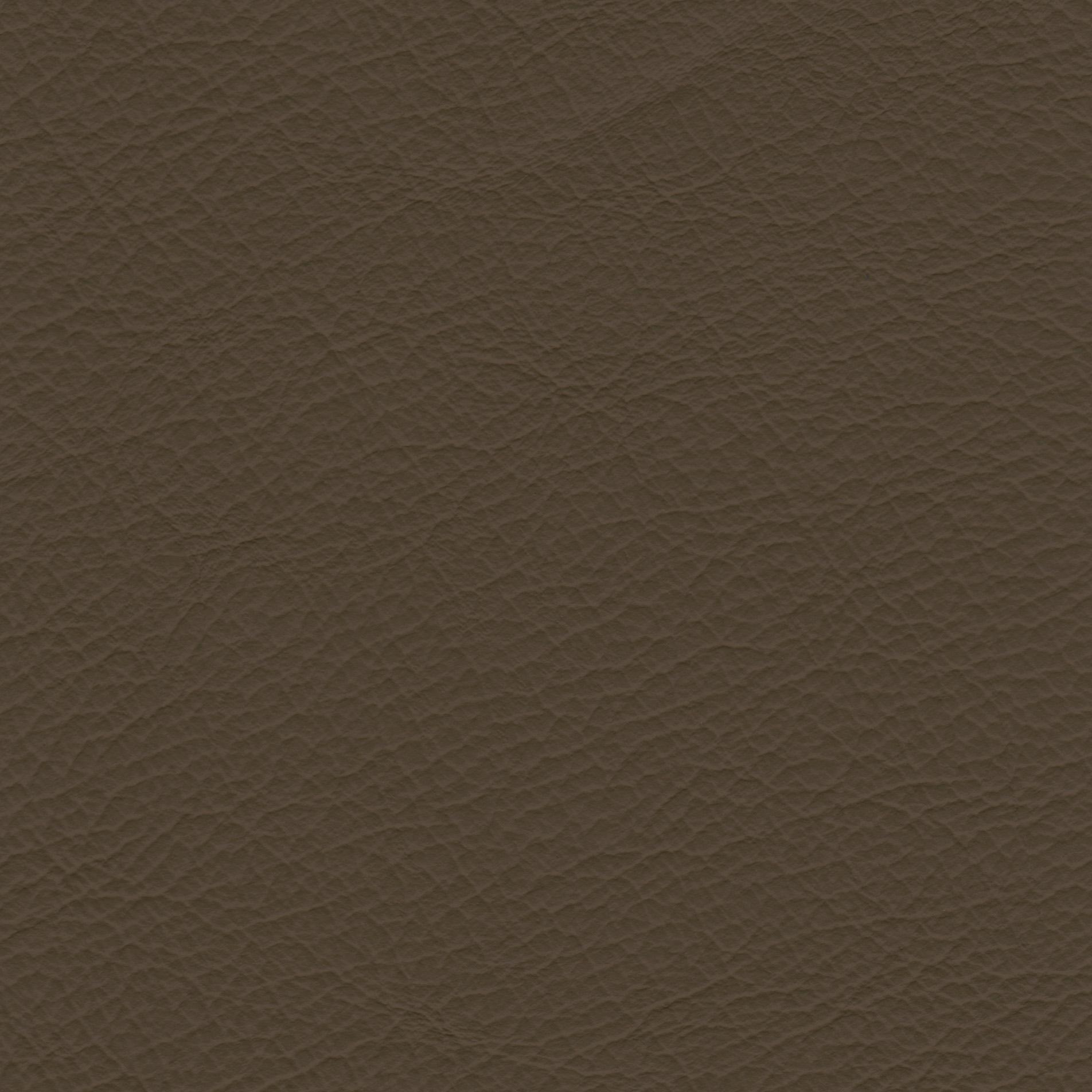PRINCE - kategorie I